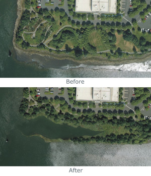 Duwamish - Before and After