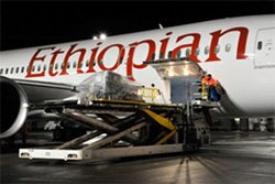 Ethiopian Airlines 787 Dreamliner Humanitarian Flight