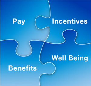 Pay, incentives, benefits and well being