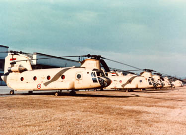 Egyptian Air Force CH-47 Chinooks
