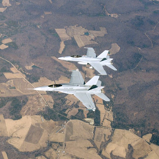 Pair of F/A-18E/F Super Hornets in flight
