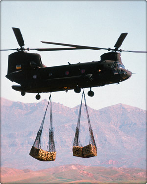 Chinook in flight carrying cargo (Neg#: DVD-1100-2)