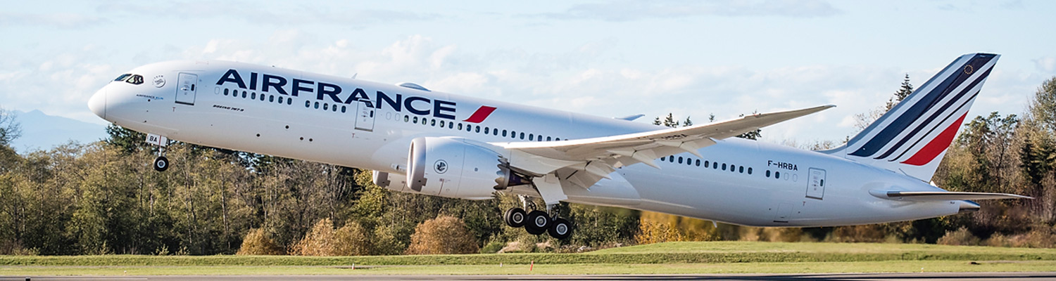 Boeing air france for Air france assistance chaise roulante