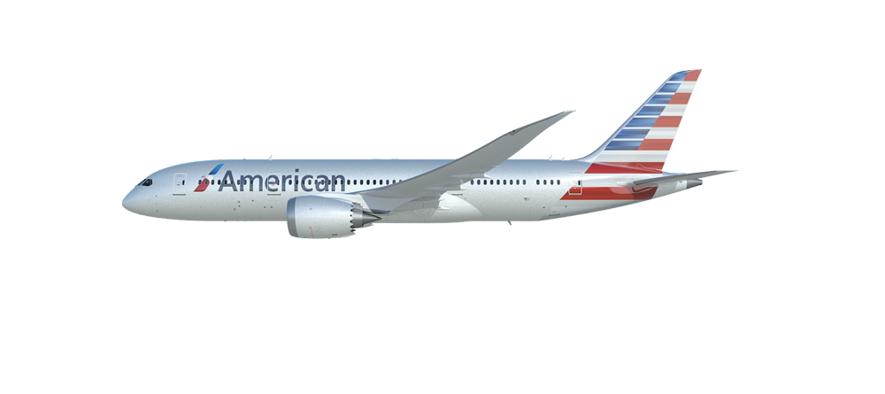 an introduction to american airlines An introduction to airline revenue integrity - kindle edition by paul rose download it once and read it on your kindle device, pc, phones or tablets use features.