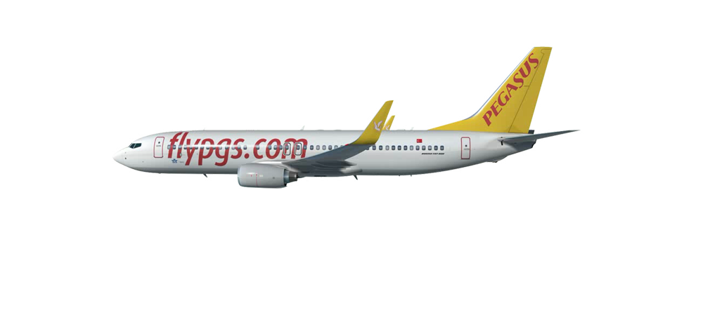pegasus airline marketing strategy The nickel-and-dime pricing that runs rampant in the cash-strapped airline industry is the bane of frugal southwest airlines: a marketing 50 case study.